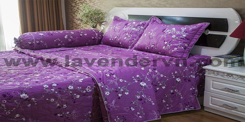 Cửa hàng chăn ga gối đệm Lavender