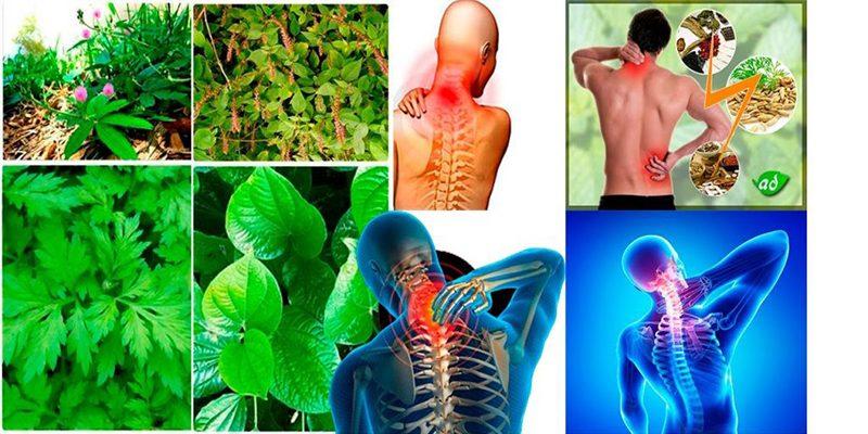 Thoái hóa cột sống uống thuốc gì? Những cách chữa trị phổ biến nhất
