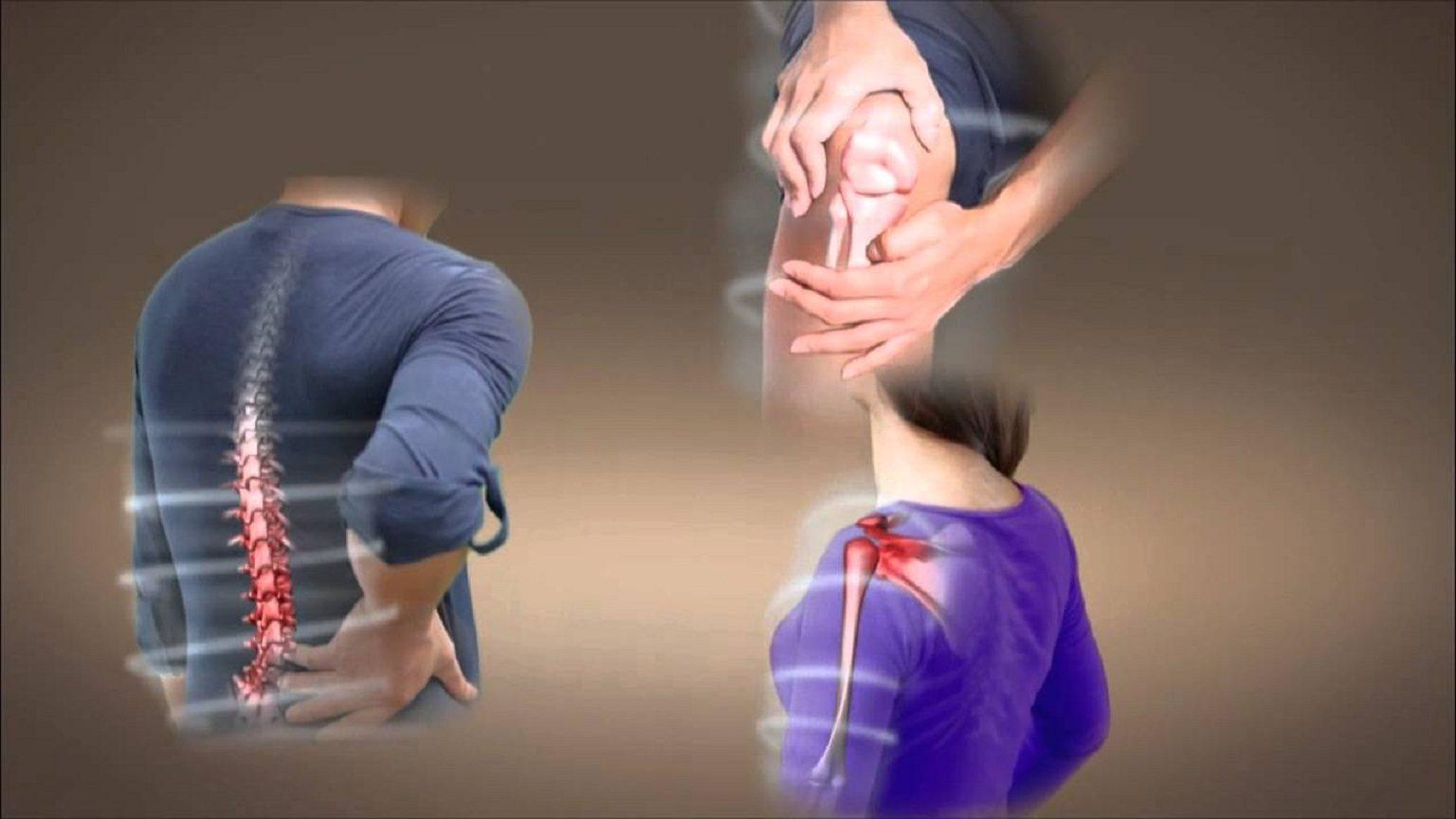 Cây dừa cạn trị mỏi, đau nhức xương khớp