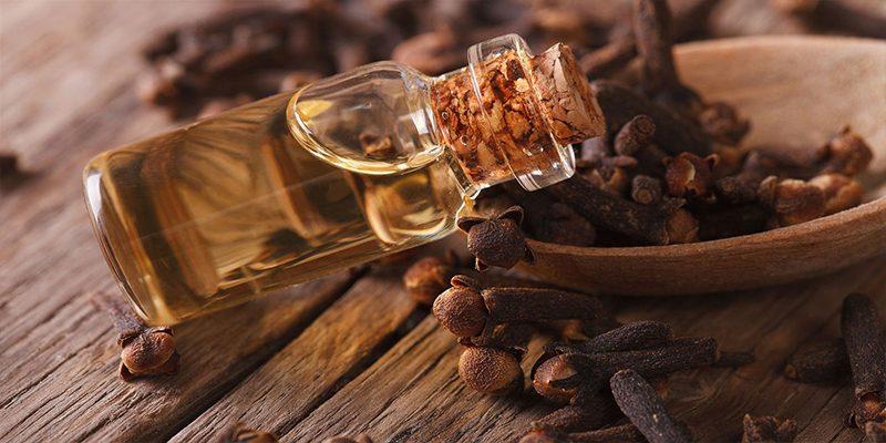 Tác dụng chữa bệnh của cây đinh hương