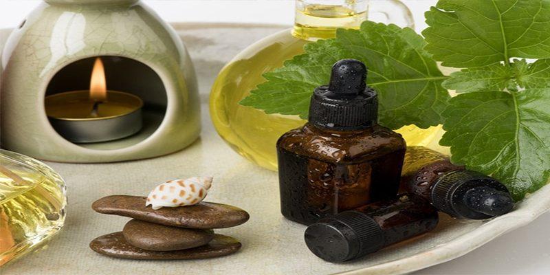 Tác dụng chữa bệnh của cây hoắc hương